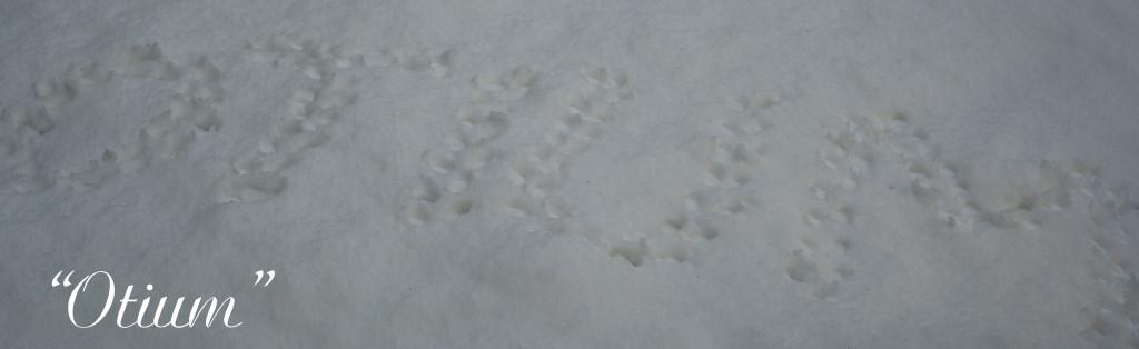 Otium snow3