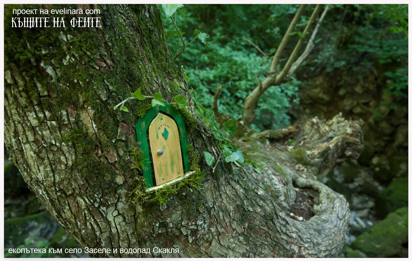 къщите на феите село Заселе